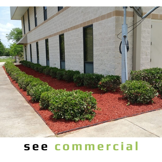 See Commercial Landscaping