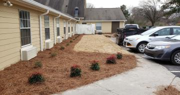 Sod and Shrubbery